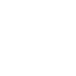 partners-claping-hands